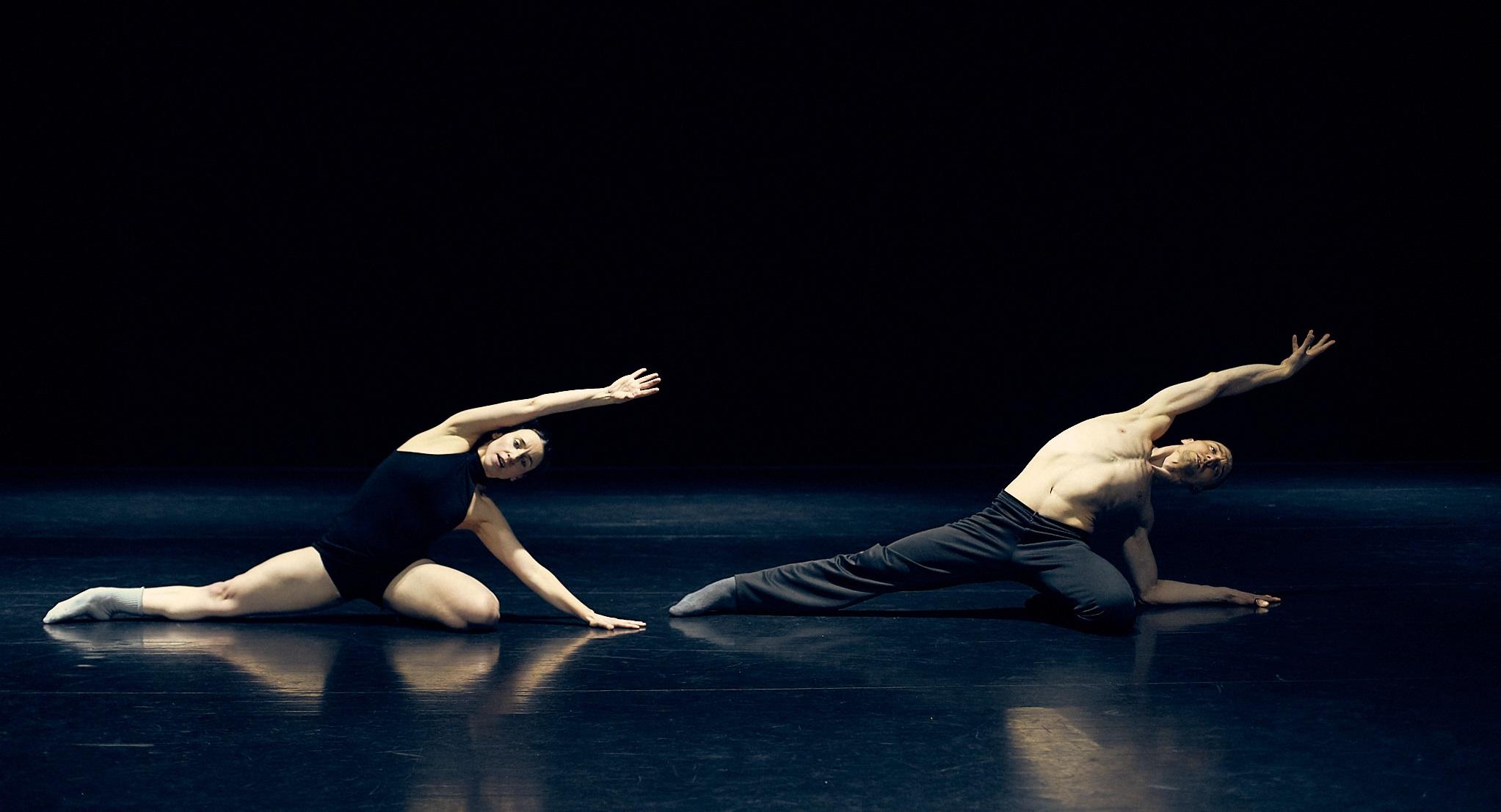 iratxe ansa igor bacovich teatros del canal madrid en danza improrrogable