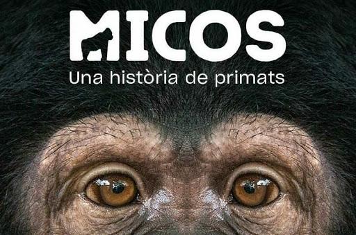Micos. Una historia de primates. Museo Ciencias Naturales Barcelona.