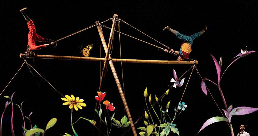 Ávol, Teatro Circo Price, Circo Primavera