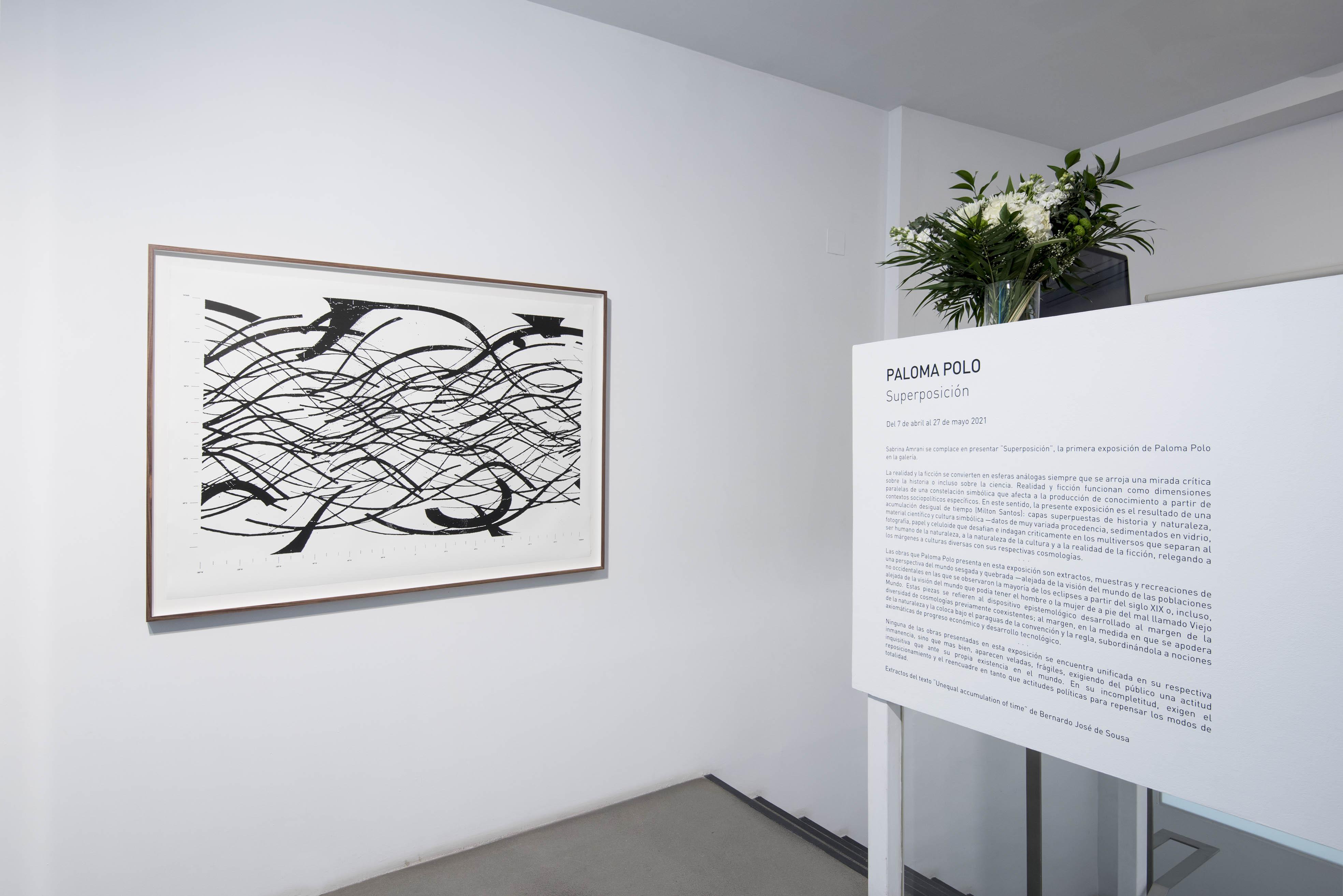 Paloma Polo, Galería Sabrina Amrani, Madrid